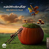 Nachtwandler, Vol. 5 - Deep Electronic House by Various Artists
