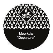 Departure by Meerkats