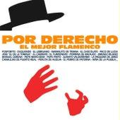 Por Derecho el Mejor Flamenco by Various Artists