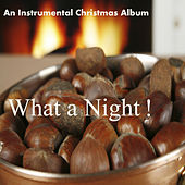 An Instrumental Christmas Album: What a Night! by The O'Neill Brothers Group