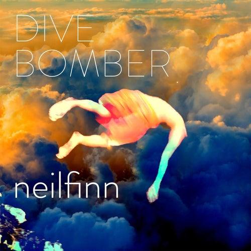 Divebomber by Neil Finn