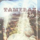 Tamerak by Steven King