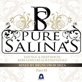 Pure Salinas Vol. 2 - Compiled By Bruno from Ibiza by Various Artists