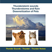 Thunderstorm Sounds - Thunderstorms and Rain - Desensitization of Pets by Rettenmaier
