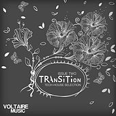 Transition Issue 02 by Various Artists