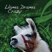 Llama Drama Crazy (feat. Nidderdale Llamas) by Ade Payne