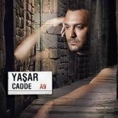Cadde by Yaşar