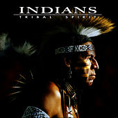 Tribal Spirit by The Indians