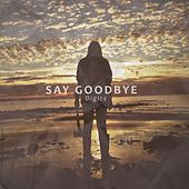 Say Goodbye by Digits