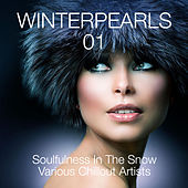 Winterpearls, Vol. 1 - Soulfulness in the Snow - Various Chillout Artists by Various Artists