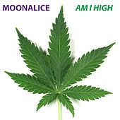 Am I High by Moonalice