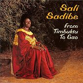 From Timbuktu To Gao by Sali Sidibe