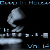 Deep in House, Vol. 12 by Various Artists