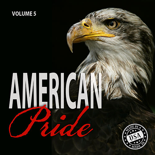 American Pride, Vol. 5 by Various Artists