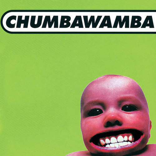 Tubthumper by Chumbawamba