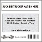 Auch ein Trucker hat ein Herz by Various Artists
