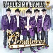 A Todísima Banda by Los Creadorez