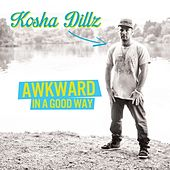 Awkward In A Good Way by Kosha Dillz
