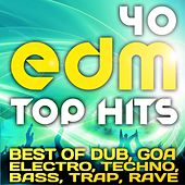 40 EDM Top Hits 2013 (Best of Dubstep, Electro, Psytrance, Progressive, Goa, Techno, Bass, Trap) by Various Artists