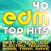 40 EDM Top Hits 2013 (Best of Dubstep, Electro, Psytrance, Progressive, Goa, Techno, Bass, Trap) by Various Artists