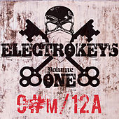 Electro Keys C#m/12a Vol 1 by Various Artists