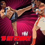 15 Hit Combo! Vol. 2 by Various Artists