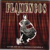 Lo Mejor de la Música Española
