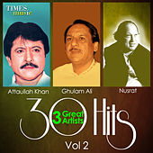 30 Hits 3 Great Artists, Vol. 2 by Various Artists