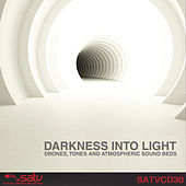 Darkness into Light by Various Artists