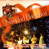 Navidad Flamenca by Navidad Flamenca