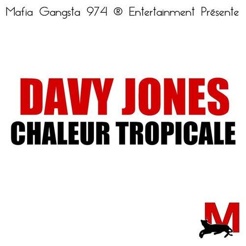 Chaleur tropicale by Davy Jones