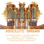 Absolute Organ by Various Artists