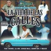 La Vida De Las Calles by Various Artists