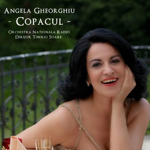 Copacul by Angela Gheorghiu