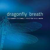 Dragonfly Breath by Paul Flaherty