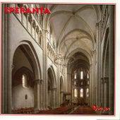 Speranta, Vol. 10 by Speranta