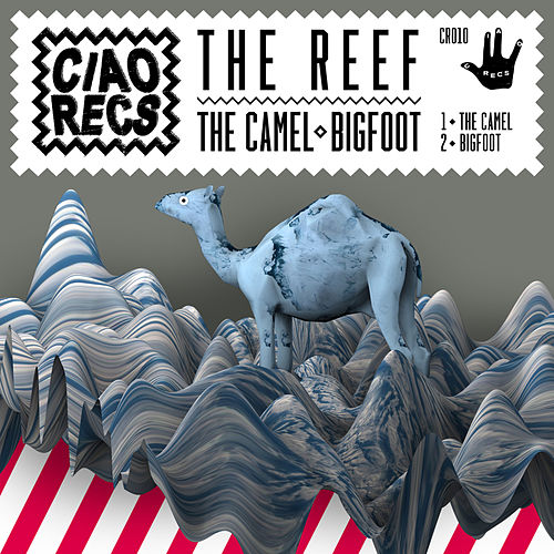 The Camel/Bigfoot by Reef