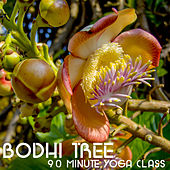 Bodhi Tree 90 Minute Yoga Class: Music for Yoga, Meditation & Relaxation by Yoga Sound