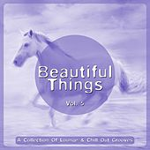 Beautiful Things, Vol. 5 (A Collection Of Lounge & Chill Out Grooves) by Various Artists