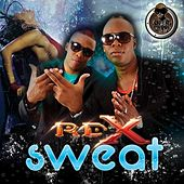 Sweat - Single by RDX