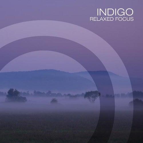 Indigo by J.s. Epperson