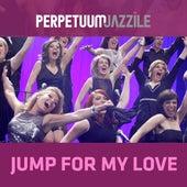 Jump for My Love von Perpetuum Jazzile