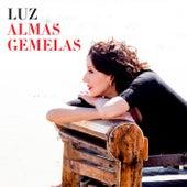 Almas gemelas by Luz