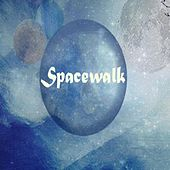Spacewalk by Spacewalk