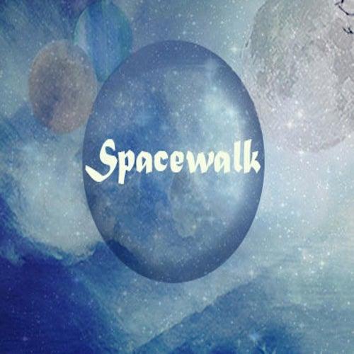 Spacewalk by Spacewalk