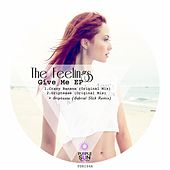 Give Me - Single by The Feelings