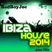 Badboyjoe's Ibiza House 2014 (4am Mix) by Various Artists