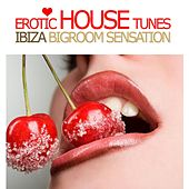 Erotic House Tunes, Vol. 1 - Ibiza Bigroom Sensation by Various Artists