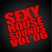 Sexy House Sounds, Vol. 6 by Various Artists