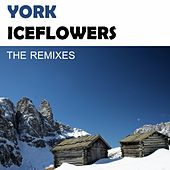 Iceflowers (The Remixes) by York